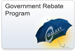 Government Rebate Program